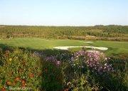 金阳庄园高尔夫球会