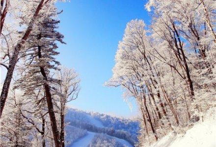 一年最冷的日子来了,这些滑雪场一定得去!
